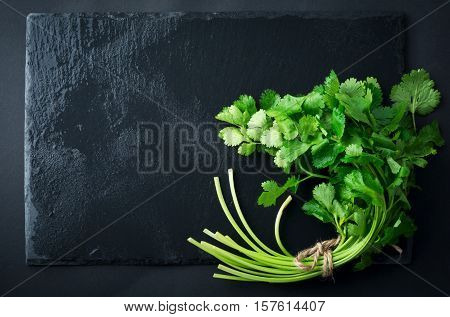 Fresh green coriander coriander leaves on a black background. Selective focus.