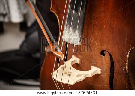 Double Bass, Wooden Musical Instrument