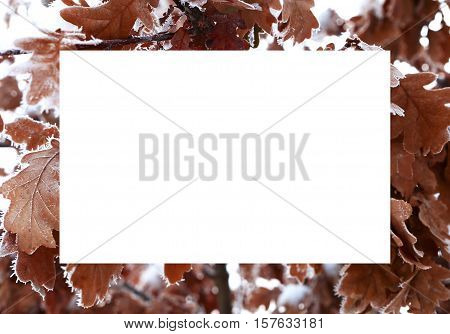 nature in winter and cold season winter landscapes and facilities photos micro-stock