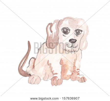 watercolor beautiful dog for a perfect placeholder