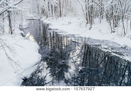 Small woodland river in snowy dreamlike forest by winter morning
