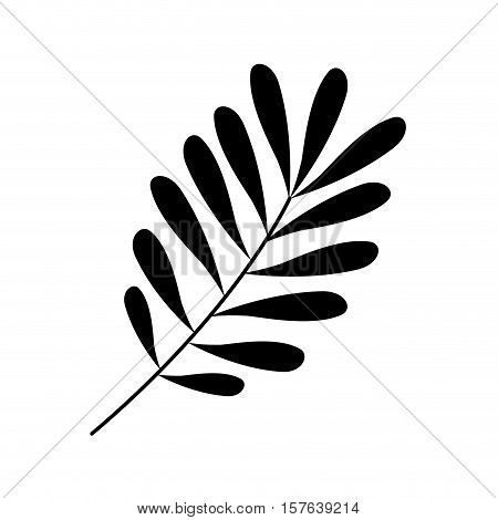 Black leaf Silhouette with ramifications vector illustration