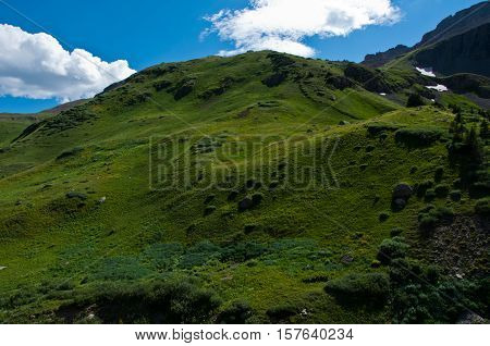 Green Summer landscape in the Rocky Mountains Alpine Tundra rolling hills of green near Telluride Colorado USA