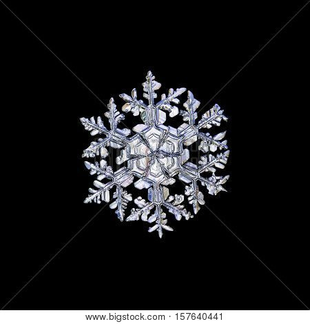 Snowflake isolated on black background. This is macro photo of real snow crystal: large stellar dendrite with massive, ornate arms and big central hexagon, divided by six sectors.