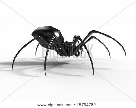 scary black spider on the white background 3D