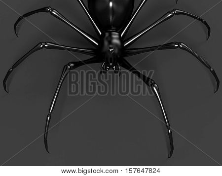 scary black spider on the dark background 3D