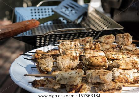 Chicken skewers on a white plate after grilling (Souvlaki)