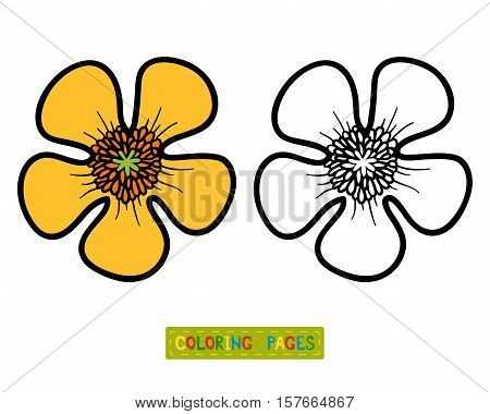 Coloring book for children, coloring page with flower Buttercup