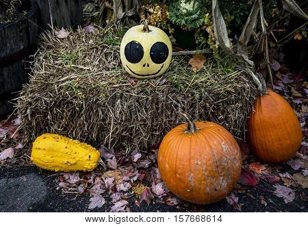 Halloween still life with pumpkins outside an American store