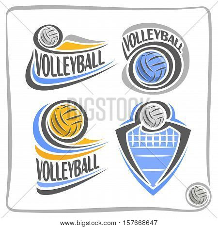 Vector abstract logo Volleyball Ball, decoration sign for sports club, simple blue yellow volleyball ball flying in goal with net, set isolated sporting equipment icon, design concept insignia blazon.