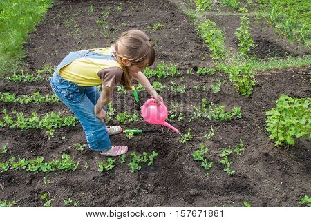 little girl in garden with growing plants