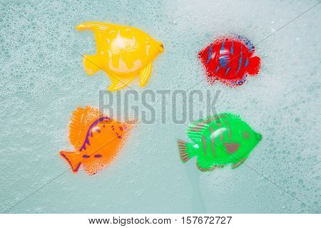 Bath Toys Fish In White Foam