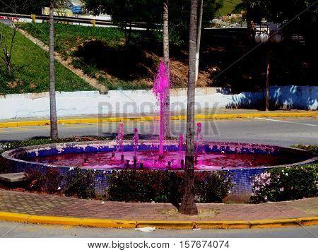 Pink Fountain (Fonte Rosa em Aparecida do Norte)