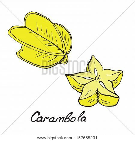 Carambola and sliced piece, hand drawn doodle, sketch in pop art style, vector