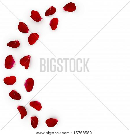 Red Rose Petals Scattered On The Floor In A Semi-circle. Under The Petals Of The Shade. 3D Illustrat
