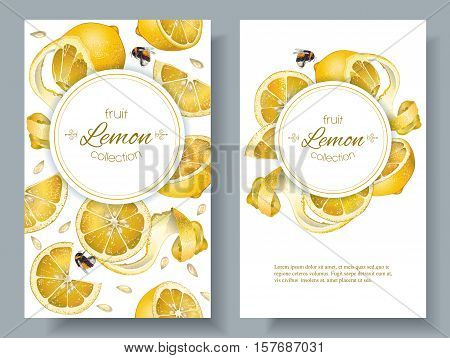 Vector lemon vertical banners. Design for juice, tea, ice cream, lemonade, jam, natural cosmetics, sweets and pastries filled with lemon, dessert menu, health care products. With place for text