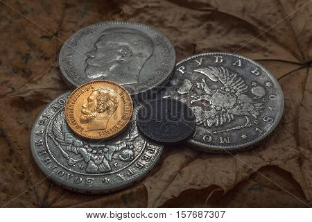 Three silver coins, one gold and one copper. An object lesson of oxidation of different metals for at one time.