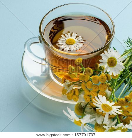 A Cup Of Herbal Tea. Alternative Medicine.