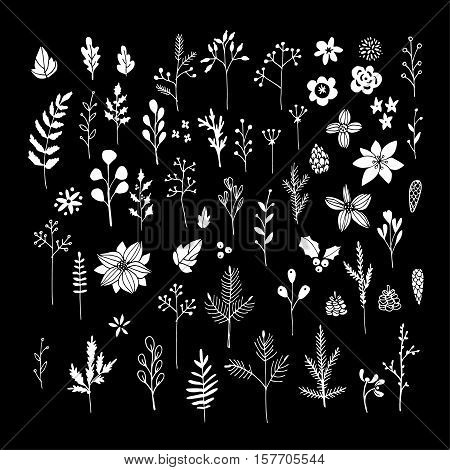 Set of white chalk flowers, leaves and branches on blackboard. Isolated Christmas floral elements. Hand drawn vector illustrations.