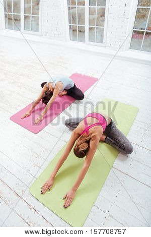 Morning activities. Two active young girls stretching and spending time in a gym while training hard.