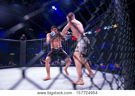 NOVI SAD SERBIA - NOVEMBER 05 2016 : MMA - SBC FIGHT TURNAMENT. ATHLETES IN THE RING EXTREME SPORT. FIGHT NIGHT PROFESIONAL ATHLETESSELECTIVE FOCUS WITH SHALLOW DEPTH OF FIELD NOVEMBER 05 2016 NOVI SAD SERBIA