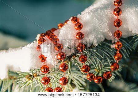 Snow covered spruce branch with a string of red beads