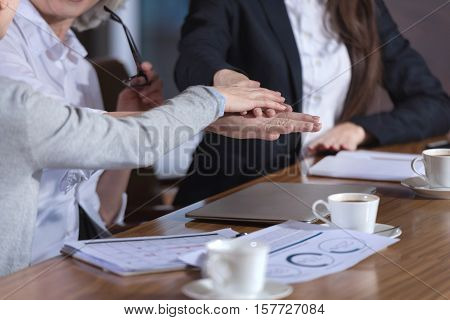 Company spirit. Close up of three female friendly colleagues holding each others hands and sitting in an office together while drinking coffee.