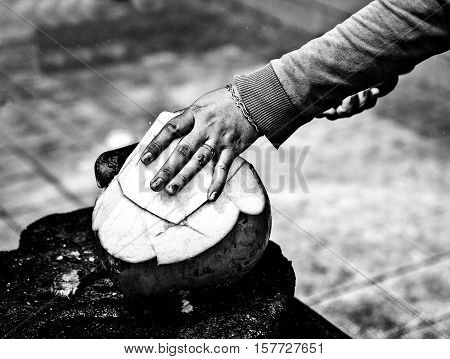 Female hand with a machete splits a coco with nectar inside. Close-up black-white photo.