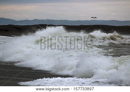 tidal wave of foaming surf,crashing on the shore