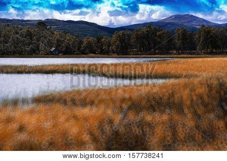 Norway autumn lake landscape bokeh background hd