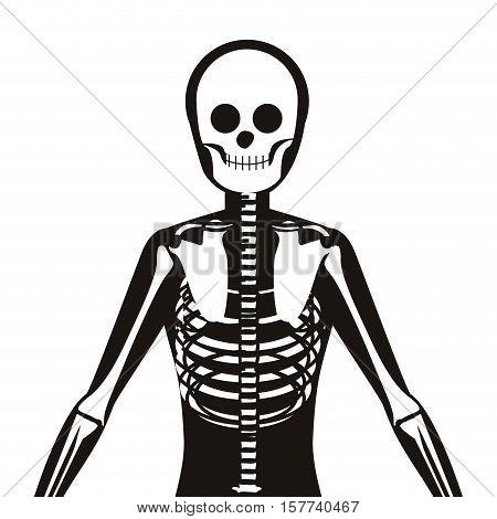 half body silhouette system bone with vertebrae vector illustration