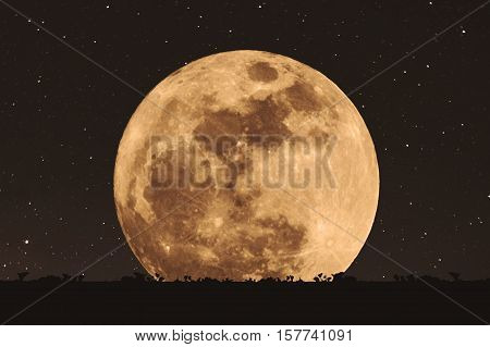 Full moon at night with stars with silhouette glass lawn. full moon background , Elements of this image furnished by NASA