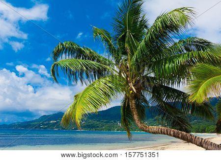 Lagoon Idyllic Island