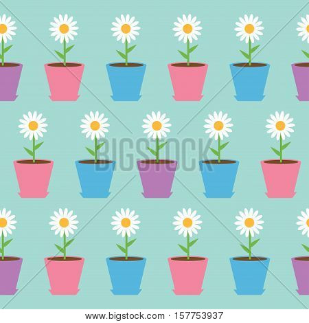 White daisy chamomile flower in pot. Camomile Seamless Pattern Wrapping paper textile template. Blue background. Flat design. Vector illustration.