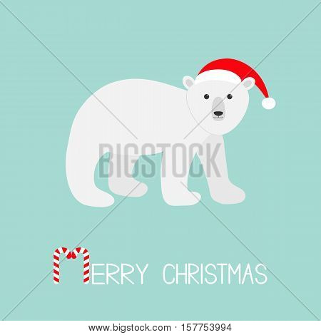 Arctic polar bear cub. Red Santa hat. Cute cartoon baby character. Merry Christmas greeting card. Candy cane stick text. Flat design. Blue background. Vector illustration