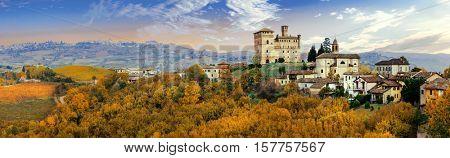 Castello di Grinzane and village - one of the most famous vine region