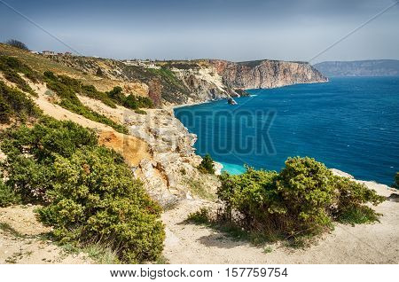 Landscape. The view from the cliff, covered with juniper, the sea.
