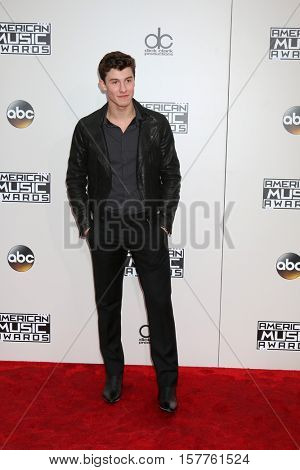 LOS ANGELES - NOV 20:  Shawn Mendes at the 2016 American Music Awards at Microsoft Theater on November 20, 2016 in Los Angeles, CA