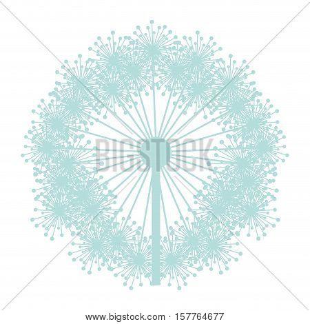 pastel blue silhouette dandelion with pistils vector illustration