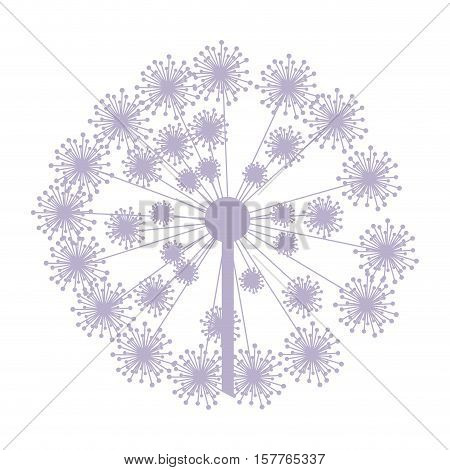pastel purple silhouette dandelion with pistils vector illustration