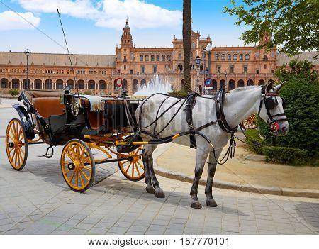 Seville Sevilla Plaza de Espana  horse carriages Andalusia Spain square