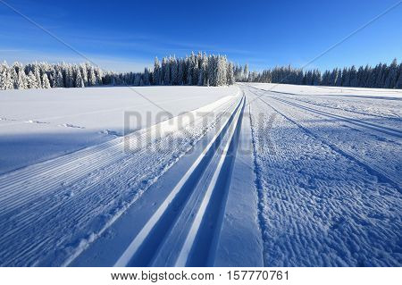 Winter sunny landscape and trails for skiers Kvilda Sumava Czech republic. The concept for the sport. The concept of winter sports. Tourism concept. Bodycopy space. The concept for promotional use
