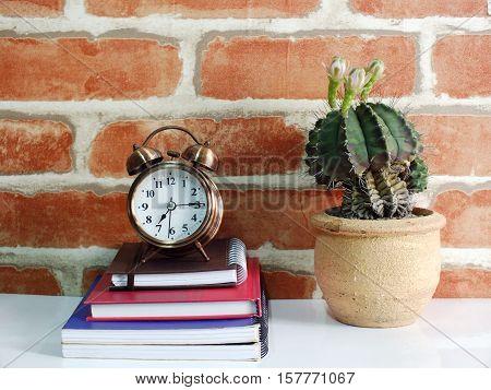 retro alarm clock with cactus on table