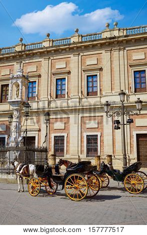 Seville Archivo Indias horse carriage in Sevilla Andalusia Spain