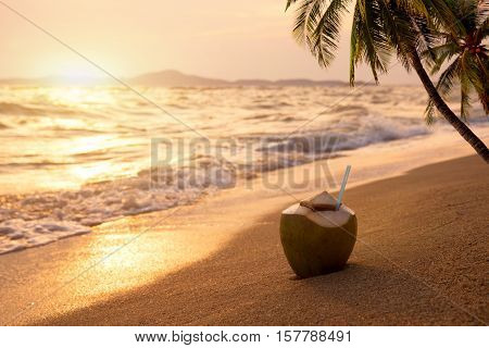 Fresh coconut cocktails on sandy tropical beach at sunset time - vacation in summer. vintage color styles