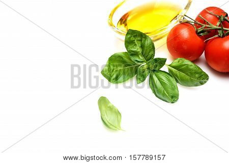 resh basil, tomatoes and oil on a white background