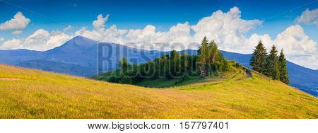 Panorama Ot The Summer Sunny Morning In The Carpathian Mountains