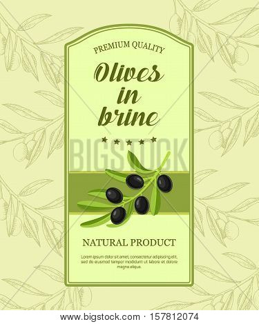 Retro label for olives in brine with branch of black olives. Vector illustration. Label designed for advertising black olives in brine premium quality.