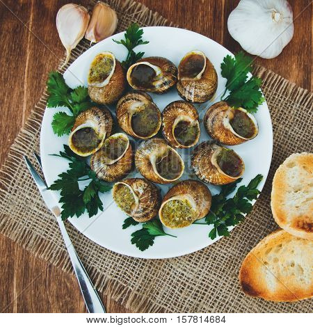 Escargots De Bourgogne - Snails With Herbs Butter, Gourmet Dish In French Traditional  With Parsley