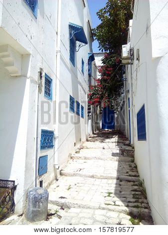 Sidi Bou Said, Tunis, Tunisia. White and blue town, Narrow picturesque street